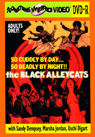BLACK ALLEY CATS, THE - DVD-R