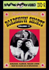 ROADSHOW SHORTS - VOL 11 - DVD-R