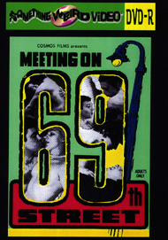 MEETING ON 69TH STREET, THE - DVD-R