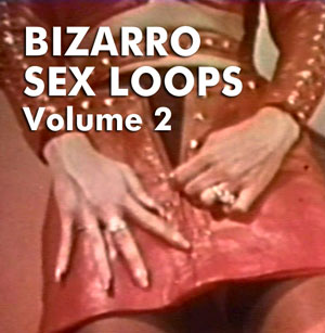 BIZARRO SEX LOOPS VOL 02 - Download