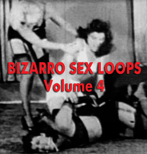 BIZARRO SEX LOOPS VOL 04 - Download