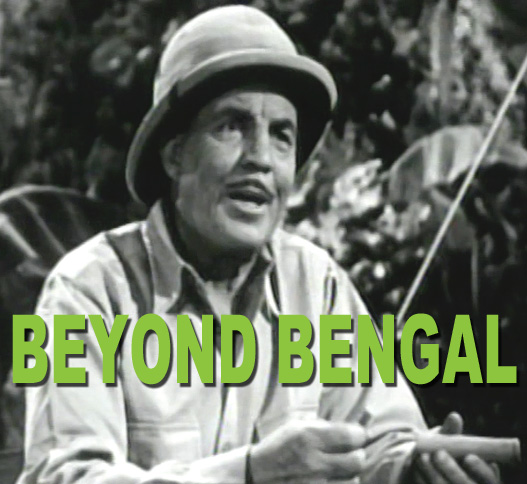 BEYOND BENGAL - Download