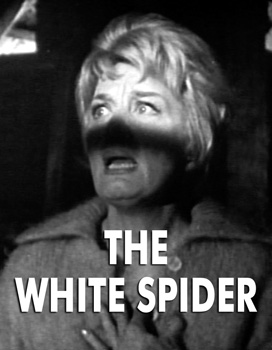 WHITE SPIDER, THE - Download