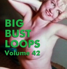 BIG BUST LOOPS VOL 42 - Download