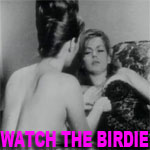WATCH THE BIRDIE - Download