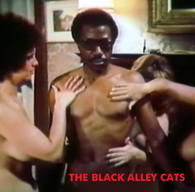 BLACK ALLEY CATS, THE - Download