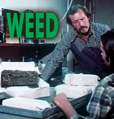 WEED - Download