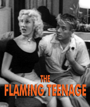 FLAMING TEENAGE - Download