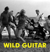 WILD GUITAR - Download