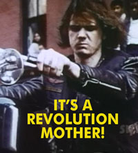 IT'S A REVOLUTION MOTHER - Download