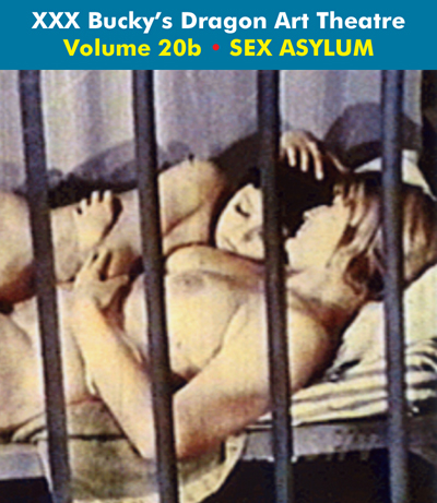 Dragon Art Theatre Double Feature Vol 020_b : SEX ASYLUM - Download