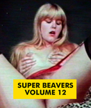 SUPER BEAVERS VOL 12 - Download